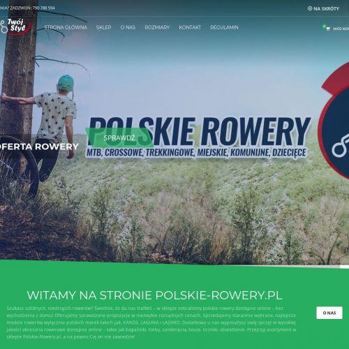Producent polskich rowerów online