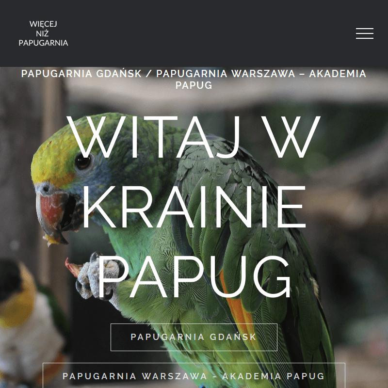 Gadająca papuga do domu